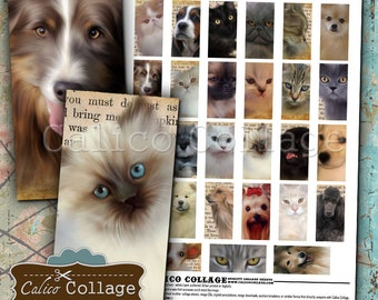 Cats and Dogs, Digital Collage, Domino Collage Sheet, 1x2 Collage Sheet, Images for Pendants, 1x2 Inch Images, Printable Pet Images