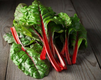 Organic Ruby Red Rhubarb Swiss Chard Heirloom Vegetable Seeds