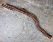 Unique Twin-Tipped Natural Wood Wand - Root of Hawthorn - for Hope.