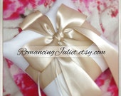 Pet Ring Bearer Pillow...Made in your custom wedding colors...shown in ivory/champagne