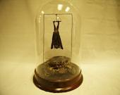 Taxidermy Fruit Bat Dome Diorama Assemblage