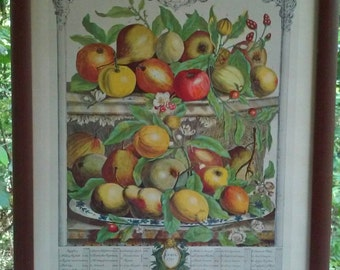 Vintage 1940s Lithograph Fruit Still Life April 1732 Apples