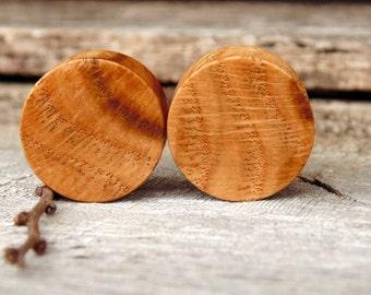 "19mm Black Oak Root burl wood ear plugs,  3/4"" gauge, hand turned organic and beautiful"
