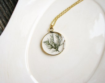 Delicate Fern Necklace, Green Plant Necklace, Nature Lovers Jewelry, Botanical Jewelry, Real Dried Leaf Necklace