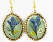 Blue Lobelia Earrings, Real Flowers,  Pressed Flowers Jewelry,  Resin (1814)