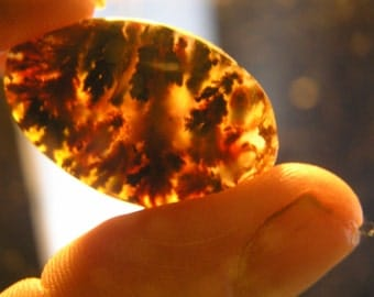 PRICE REDUCTION Old Texas Red and BLack  Plume  Agate Freeform Cabochon