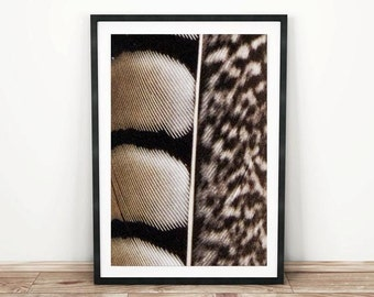 PRINTABLE wall art. Feather 8x10 and 11x14. modern room decor, black and brown, animal print, feather print, boho print