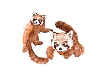 minimalist watercolor print: Red Pandas