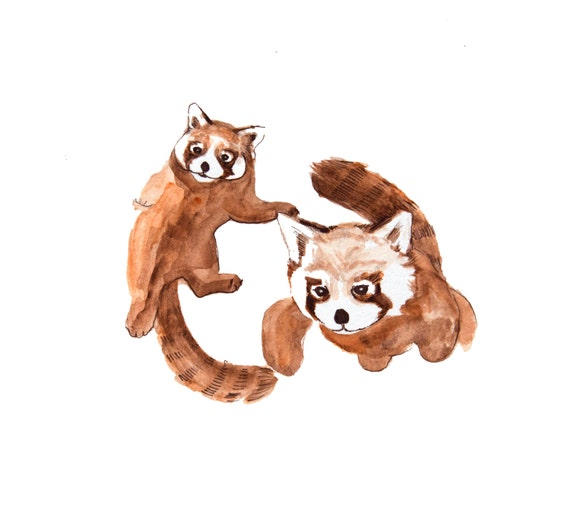 minimalist watercolor print: Red Pandas
