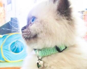 Crochet Cat Collar Seafoam Green Kitten Collar