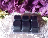 Blackberry Sage Protection Tarts, Soy Tarts, Soy Wax, Wax melts