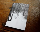 Blank Greetings Card - Little Rabbit in the Big Wood