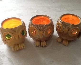 Owl Lumination
