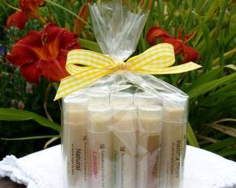 Sampler Gift Set of 10 Handmade All Natural and Vegan friendly Lip Balms, assorted all natural flavors