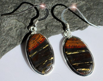 Abstract Nature - Beautiful Tiger Iron Sterling Silver Earrings