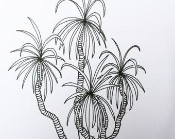 Shaggy Palm - an original art greetings card