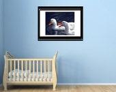 Nursery Room Wall Art-Duck Photography-Fine Art Print-Bird Photography-Quirky Wall Art-Navy Blue-Orange-White-Unframed-Bathroom Wall Decor