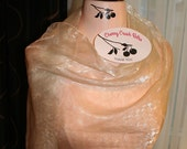 RESERVED - Balance due for Custom Made Artful Decor Painted Full Size Dress Form Peach and Cream Tones with Logo