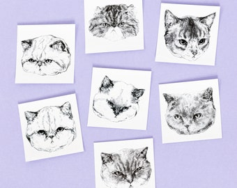 "Temporary ""Cat Tatts"" Tattoos - Set of seven cool fake cat tatts quick cattoos waterproof non toxic tats for kids Grumpy kitty festival fun"