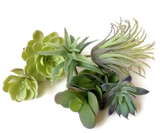 Faux succulents collection, succulent, succulent plants, artificial succulent, succulent, succulent terrarium, succulent planter, air plant