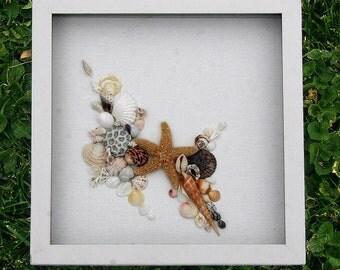 Beach Nautical Seaside Seashells Sea Shells Art Collage Small Shadowbox Framed Art Romantic Cottage Coastal Home Decor Starfish