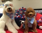Yankee Doodle Dude or Yankee Doodle Diva Fourth of July Embroidered Dog Bandana