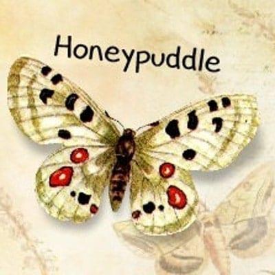 Honeypuddle
