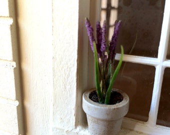 flower pot with lavender in Provence.