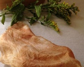 Hand-dyed Silk Cloth Scraps (3) with natural plants for artists, quilters, mixed media