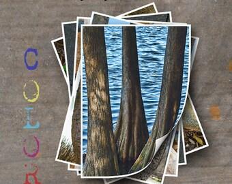 LETTER W Alphabet Photography LETTERS - Color Alphabet Photos