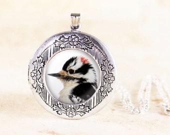 Downy Woodpecker Locket - Silver Bird Locket, Silver Woodpecker Jewelry, Woodpecker Bird Necklace, Woodpecker Necklace, Bird Photo Locket