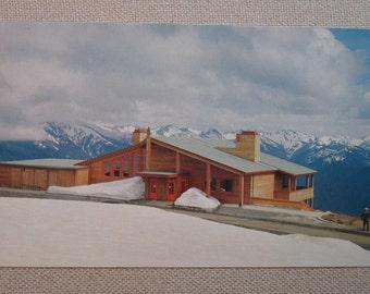 Vintage Postcard of Hurricane Ridge Lodge Olympic National Park, Wash