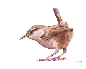 Wren print of watercolor painting, W12716, wren watercolor painting, wren painting, A4 size, Bird art wall print
