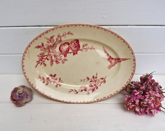 SHABBY CHIC Lovely Dish - French Antique Dish With Bird Pink Apple Blossom Shabby Chic - Favori - Sarreguemines Digoin - French Transferware