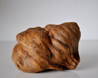 Vintage Piece of Burl Wood