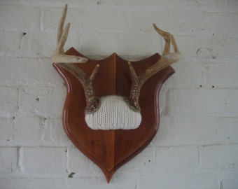 Vintage 8 Point Deer Antlers - Taxidermy - Repurposed