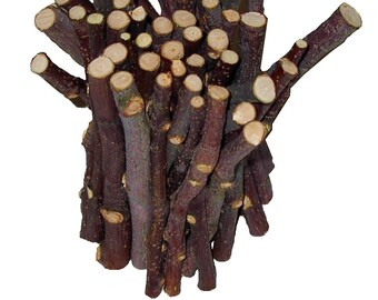 45 Apple Chew Sticks For Rabbits, Guinea Pigs, Chinchillas, Gerbils, Hamsters,,,,,,