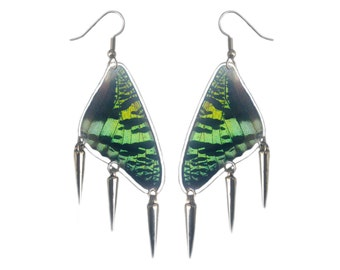 Real Butterfly Wing Earrings with Paparazzi Spikes - Fashion Jewelry, Dangle Earrings, Lightweight, Natural, Colorful