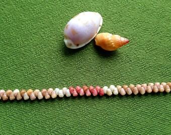 Shell Bracelet - Shell Jewelry -Hawaiian Shell Jewelry Eco Friendly Natural Shell Bracelet Hand Picked from Kauai Traditional Hawaiian Style