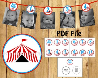 Carnival Photo Banner Circus Photo Banner 1st Year picture banner Carnival 1st Birthday banner Circus Birthday Banner 12 month banner