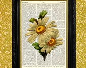 Daisy Print, Dictionary Page Art Print, Recycled Upcycled Vintage Book Page Art, Home Decor