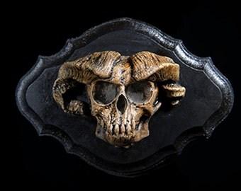 Common Imp Skull Wall Plaque, type B