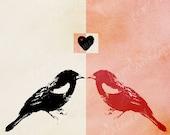 Valentine Wall decor Download, Love Bird Photo, Lovebirds, Photo Art, Pinky-Red, Pop Art Graphic Download, 8x10, Digital Image Download