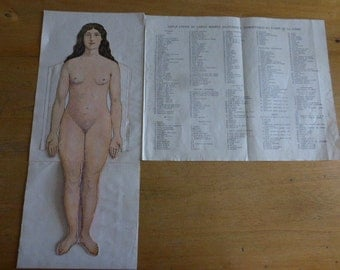 Anatomy, Antique French Medical,  Fold Out Female Doll, Diagrams Charts of The Human Body Skeleton Circa 1920