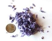 New! Micro-Confetti - Violet