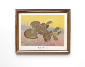 Ruffed Grouse Framed Print - Les Kouba - Wildlife Art