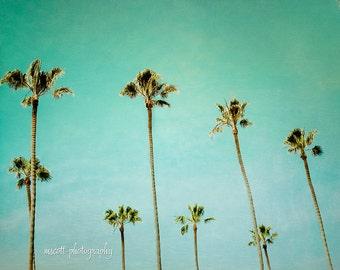 Palm Tree Print   San Diego Art   Endless Summer   Turquoise   Tropical Print   California Wall Art   Beach House Decor   8x12 Print