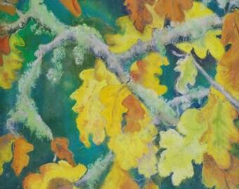 Oregon scrub oak in Autumn