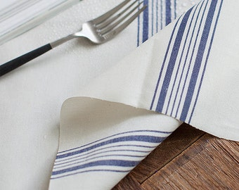 Blue Stripe Laminated Fabric - By the Yard 93444