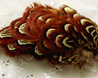 Vintage Multi-color Clump of Organic Pheasant Smaller Soft Feathers Primarily Red Brown